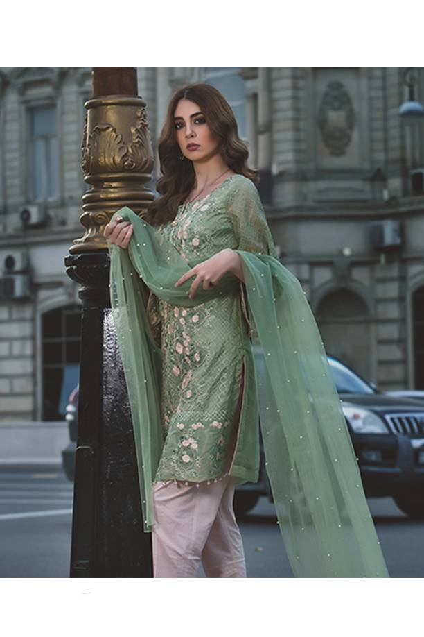 Areeba Saleem Embroidered Organza Unstitched 2 Piece Suit AS17C 1A