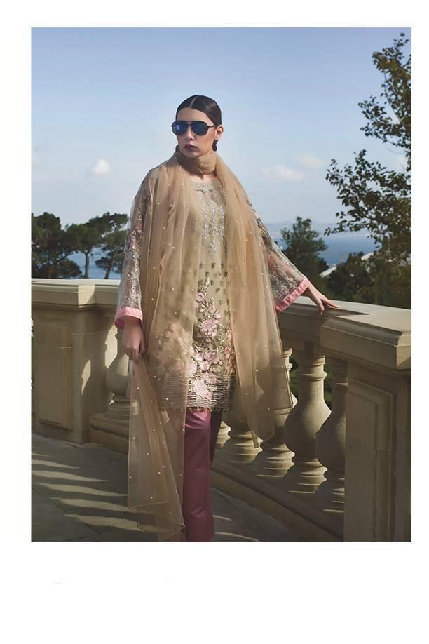 Areeba Saleem Embroidered Cotton Net  Unstitched 2 Piece Suit AS17C 13