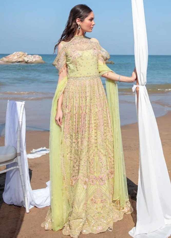 Amiraa by Reign Embroidered Net Suits Unstitched 3 Piece RGN21AM RN-01 DIBA-A - Luxury Collection