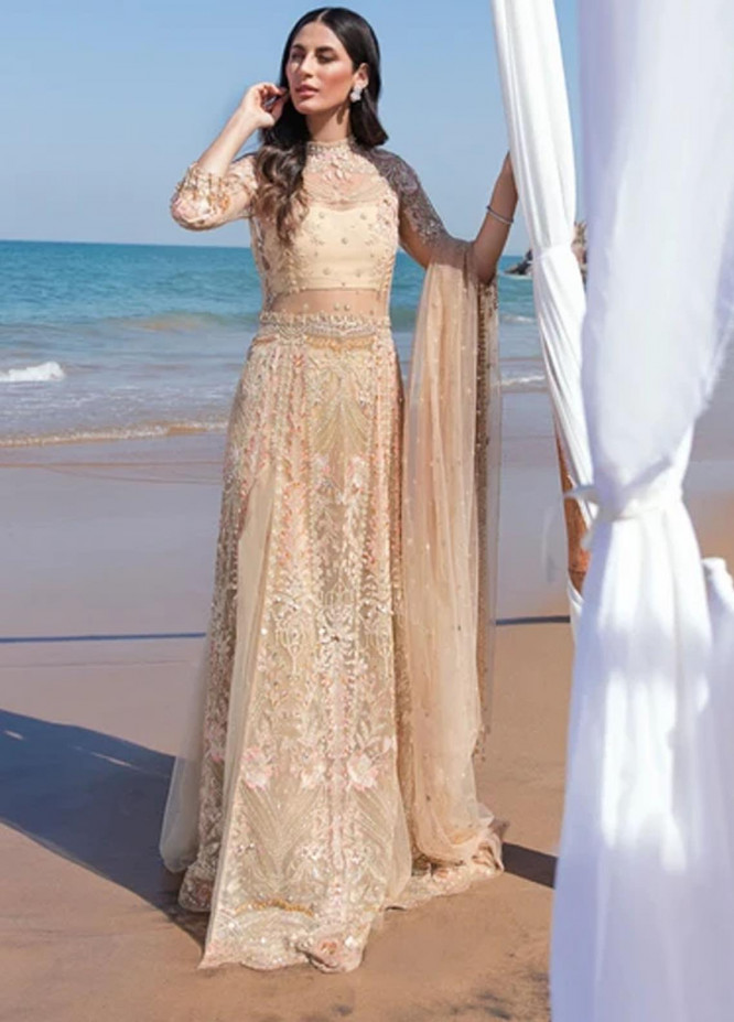 Amiraa by Reign Embroidered Net Suits Unstitched 3 Piece RGN21AM RN-02 DIBA-B - Luxury Collection