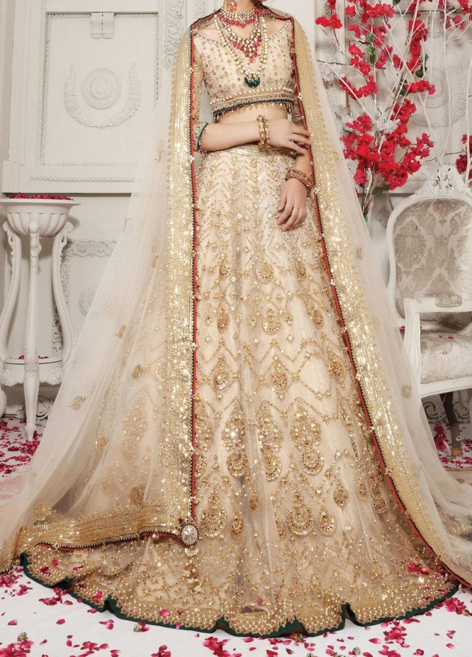 Anaya By Kiran Chaudhry Embroidered Tulle Net Stitched 3 Piece Suit AKC20B 12 Isabella - Bridal Wear Collection