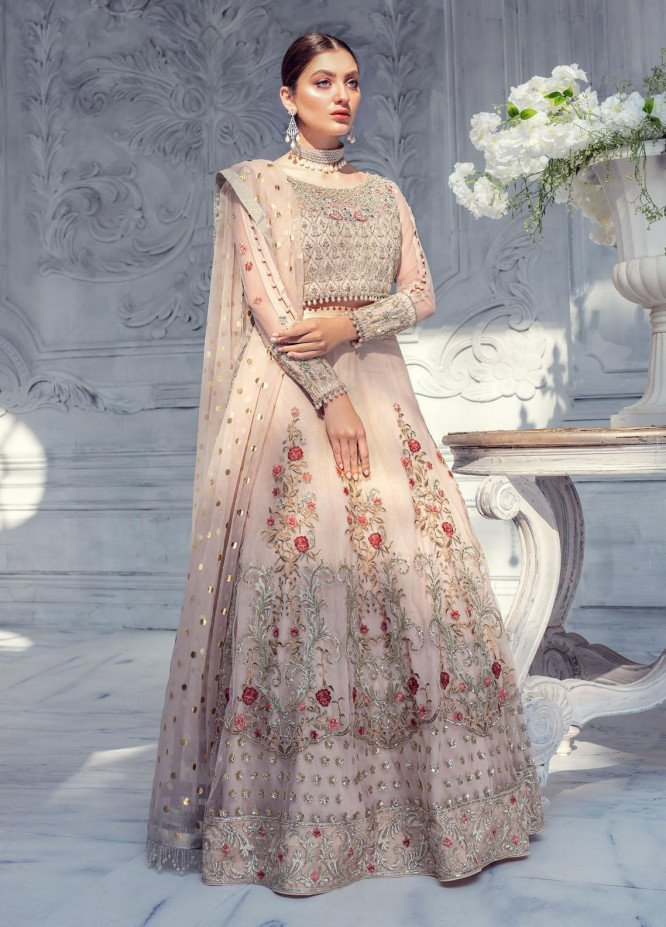 Meeral Embroidered Net Unstitched 3 Piece Suit MRL20LX 05 - Luxury Collection