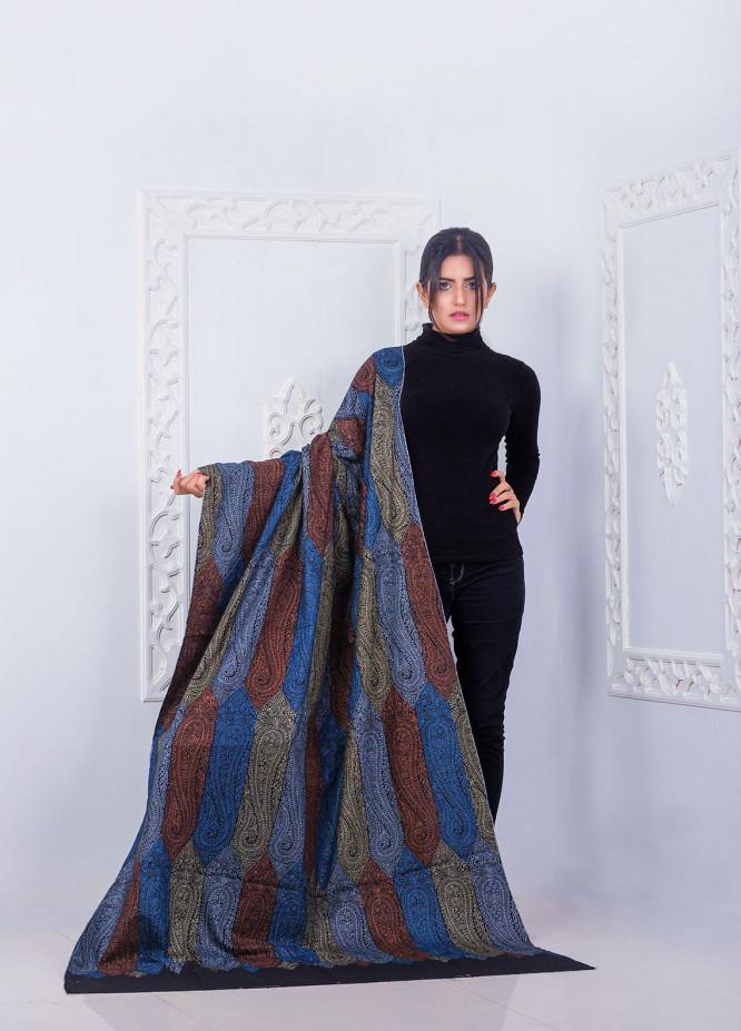 Sanaulla Exclusive Range Embroidered Pashmina  Shawl Shawl 146120 - Pashmina Shawls