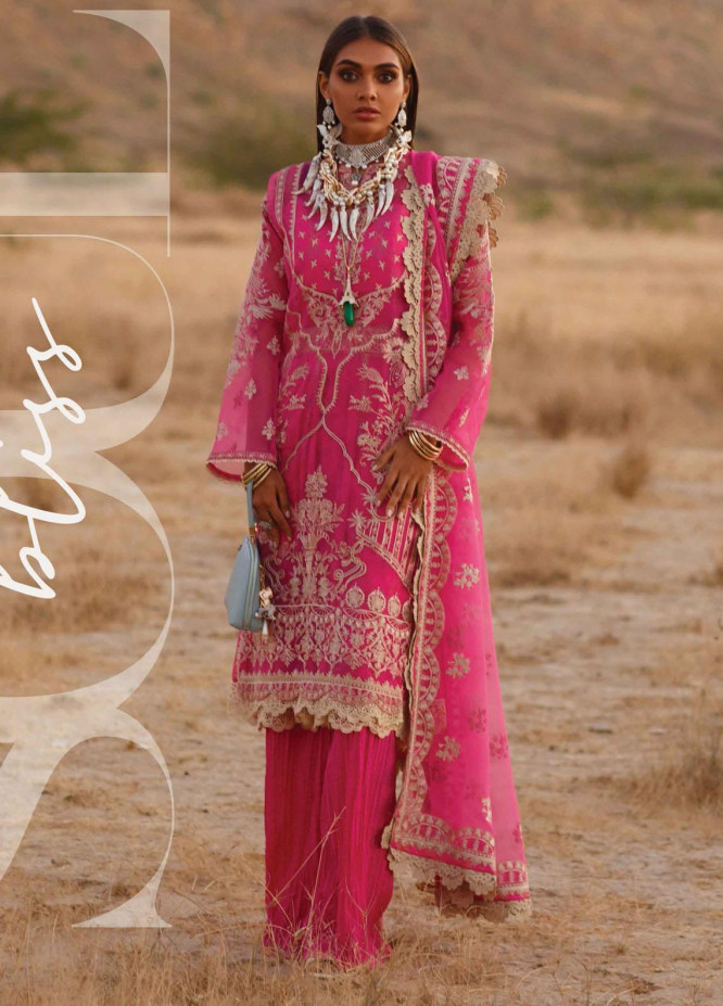 The Soul Saga By Rang Rasiya Embroidered Organza Suits Unstitched 3 Piece RR21SS 01 Nevoir - Premium Collection