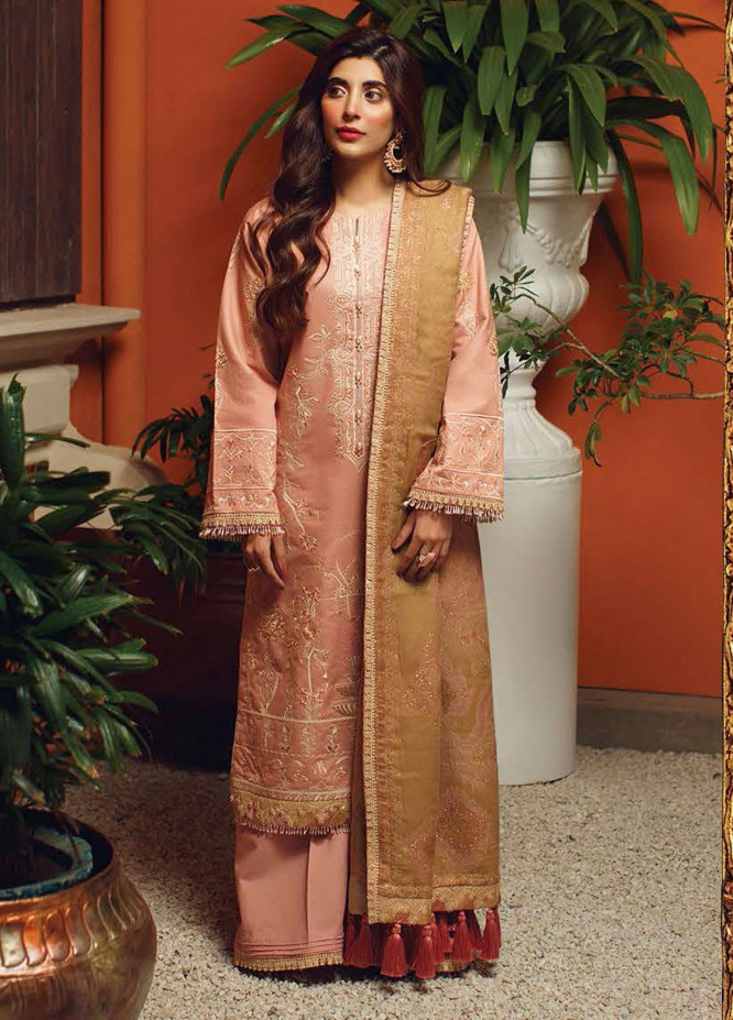 Rang Rasiya Embroidered Cotton Unstitched 3 Piece Suit RR20PW 151 Vinette - Winter Collection